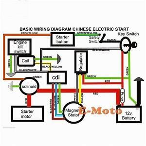 Wiring Diagram For 49cc Quad 26645 Archivolepe Es