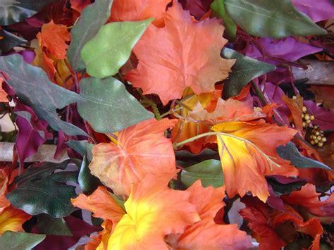 Herbst Gartenarbeit by Gartenarbeit Im Herbst Mamiweb De