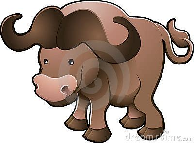 cute african cape buffalo vector stock image image
