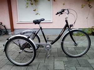 Hochbett Für Erwachsene Kaufen : dreirad erwachsene kaufen gebraucht und g nstig ~ Markanthonyermac.com Haus und Dekorationen