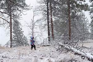 5, Reasons, Kids, Should, Play, Outside, In, The, Winter, U2013, Backwoods, Mama