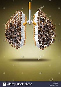 Lung Made Of Cigarettes Stock Photo