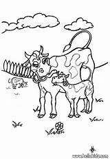 Coloring Pages Herd Cows Cow Farm Popular Animal sketch template
