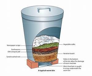 Organic Farming  Why Should Farmers Start An Earthworm