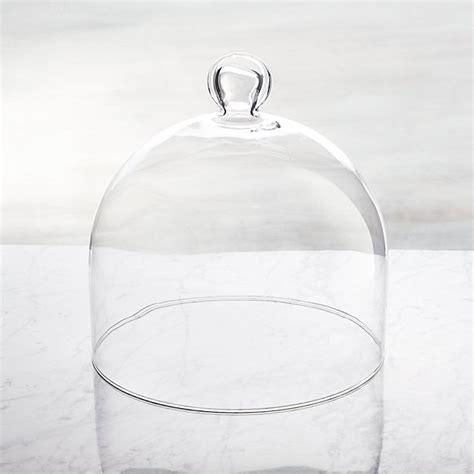 glass dome crate  barrel