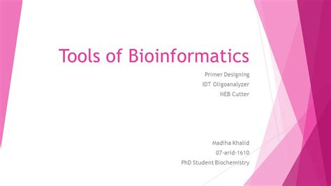 idt primer design tools of bioinformatics ppt