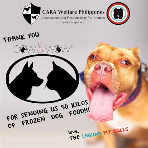 welfare philippines blog archive   bow
