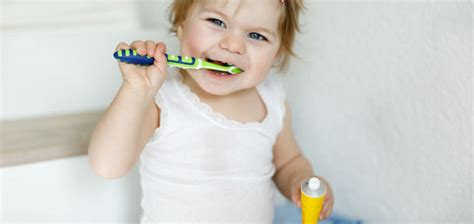 guide  caring   babys dental health arkansas