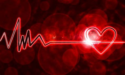 nonprofit burnout   ended    heart monitor