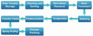 Sauce  Ketchup Powder Plant  U0026 Tomato Puree Powder Plant Manufacturers In India