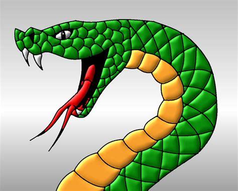 viper head drawing   clip art  clip