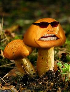 Jack Nicholson As A Mushroom Pictures