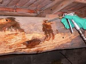 Traitement Bois Charpente : charpente en bois traitez avant qu 39 il ne soit trop tard ~ Edinachiropracticcenter.com Idées de Décoration