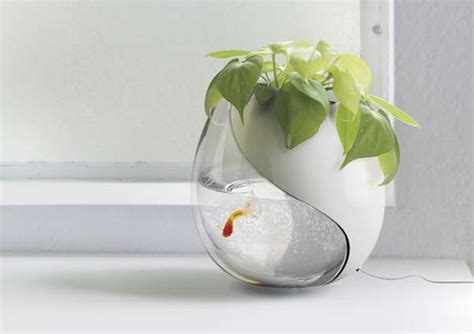 how to clean a fish bowl self cleaning fish bowl essentially the most effective on line backyard aquaponic reviews