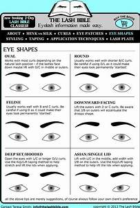 Eyelash Extensions Styles For Different Eye Shapes