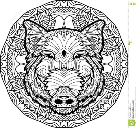 Coloring Antistress Page Wild Boar Is Drawn By Hand With