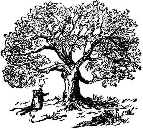 oak tree clipart black and white tree clip oak tree clipart black and white image 24918