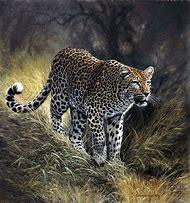 African Wildlife Art Prints