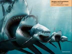 Real Megalodon Sharks Still Alive