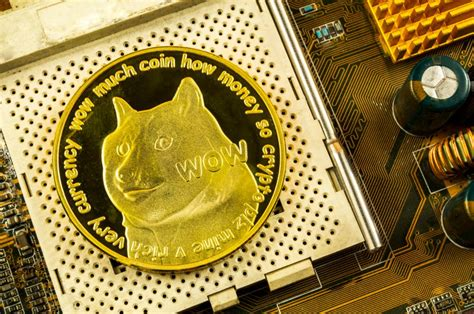 What price will DOGE hit: will Dogecoin reach $100 ...