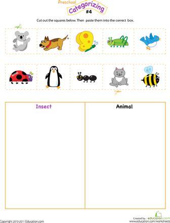 cut  categorize  science projects preschool