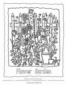 171 best :3 Flowers images on Pinterest | Coloring book ...