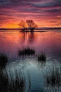 Merced National Wildlife Refuge | Beautiful sunset, Merced ...