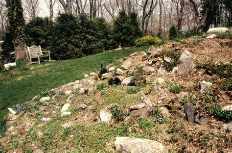pietre per giardino roccioso giardino roccioso guida completa