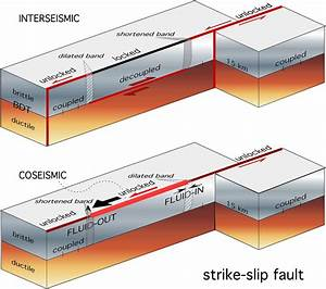 An Interseismic And Coseismic Model For An Ideal Strike