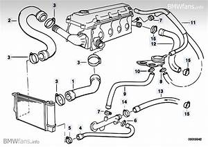 Bmw Cooling System M42  M43  M44 E36 Motor