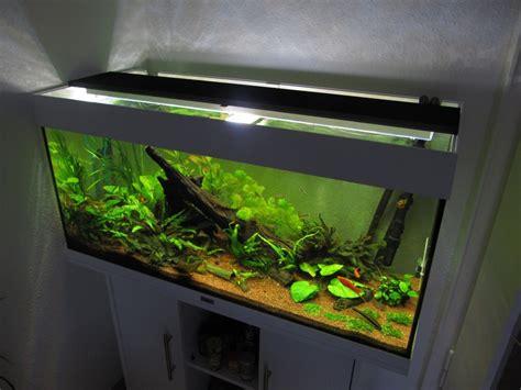 aquarium led beleuchtung selber bauen schullebernds