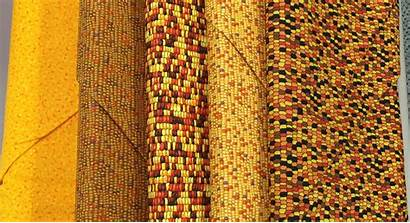 Fabric Novelty Kanvas Fabrics