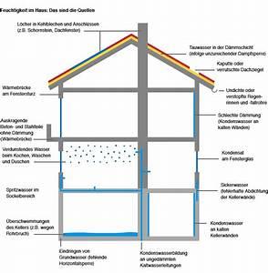 Optimale Luftfeuchtigkeit Im Haus : luftfeuchtigkeit im haus ~ Eleganceandgraceweddings.com Haus und Dekorationen
