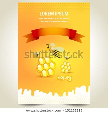 cover poster face honey mead bee stock vector