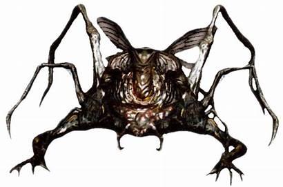 Souls Dark Spider Darksouls Wikia Crag Wiki