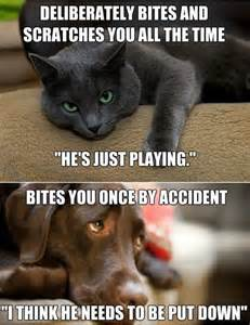 cats dogs pictures quotes memes images jokes photos