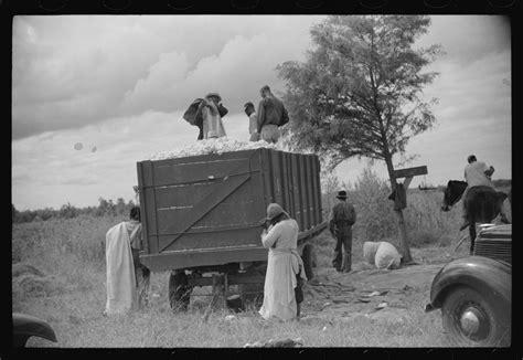 marion post wolcott mississippi delta plantation life