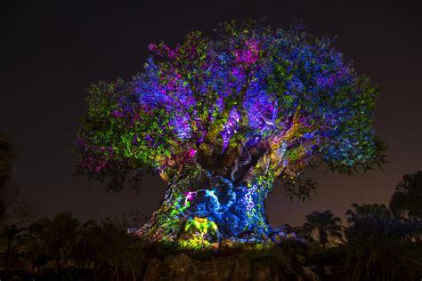 wdwthemeparkscom news disneys animal kingdom awakens  night   jungle book show