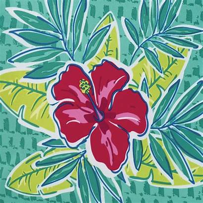 Tropical Birthday Month Glamour Hibiscus Celebrating History