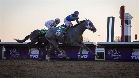 essential quality wins breeders cup juvenile  keeneland