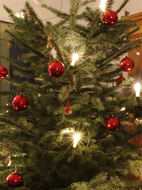 so bleibt der weihnachtsbaum lange frisch news pr
