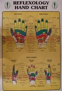 17 Best Images About Hand Reflexology Chart On Pinterest