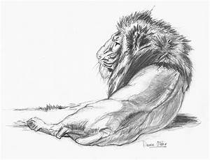 Easy Pencil Sketches Of Animals - DRAWING ART IDEAS