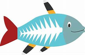 X-ray clipart fish - Pencil and in color x-ray clipart fish
