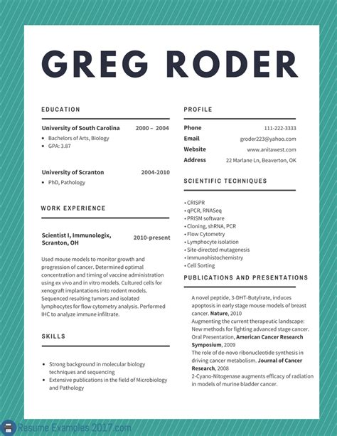 example of best resume best cv examples 2018 to try resume examples 2018