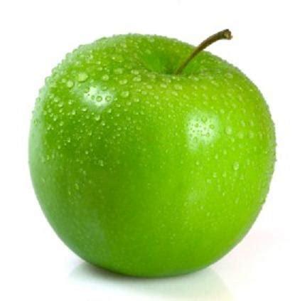 housse 1 apple home beweb ucsd edu