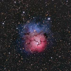 Trifid Nebula - Messier 20 | Constellation Guide