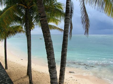 turisti per caso mauritius mauritius pointe aux piments viaggi vacanze e turismo