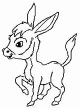 Coloring Donkey Donkeys Preschool sketch template