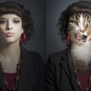 chat decoiffe biblond pour les coiffeurs